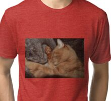 Happy & snug in his faux-fur nest - Minxi 2011 Tri-blend T-Shirt