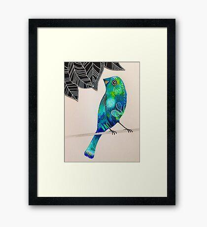 Green & blue patterned bird Framed Print