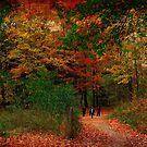 Walking in splendor by MarianBendeth