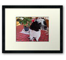 Sweet Puppy Framed Print