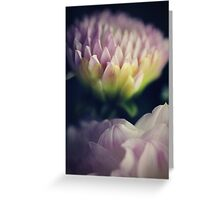flower close up one Greeting Card