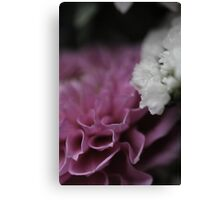 flower close up five Canvas Print