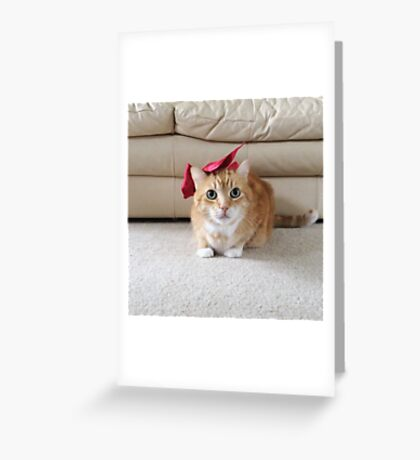 Cute cat with a bow Greeting Card