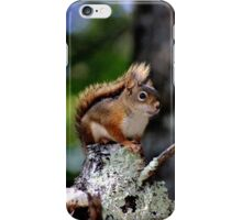 Keeping Guard by Day iPhone Case/Skin