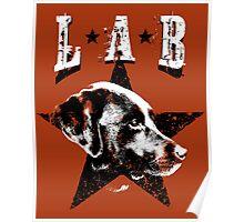 Black Lab Poster