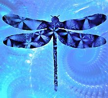 Blue Dragonly by emilymhanson