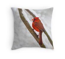 Cardinal's Snowy Breakfast Throw Pillow