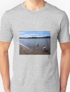 White swans swimming on a blue lake Unisex T-Shirt