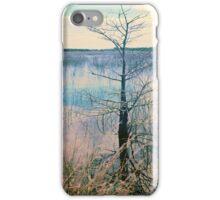 Shark Valley Cypress iPhone Case/Skin