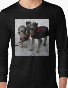 Freeze a jolly good fellow (or two) Long Sleeve T-Shirt