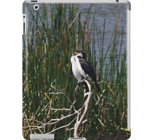 Cormorants iPad Case/Skin