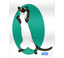 Triangle Playing Cat Poster