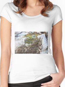 Moss in a River of Wood Women's Fitted Scoop T-Shirt