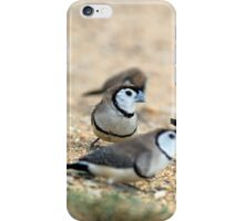 Double Barred Finch iPhone Case/Skin
