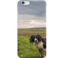 English Springer Spaniel in the field iPhone Case/Skin