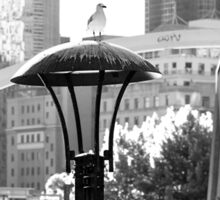 Birds eye view of the city Sticker