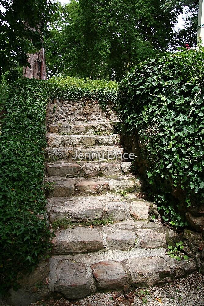 Old Stone Steps by Jenny Brice