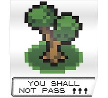 Tshirt Shall not Pass Poster