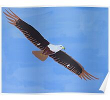 'African Fish Eagle' by Luke Becker (2016) Poster