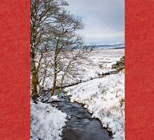 Winter Wonderland in Central Scotland Tri-blend T-Shirt