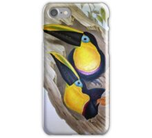 John Gould's Monograph of the Ramphastidae, or Family of Toucans, published iPhone Case/Skin