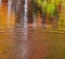 Water Reflection - Sweet Water Creek Sticker