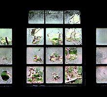 Broken View by Jo Nijenhuis