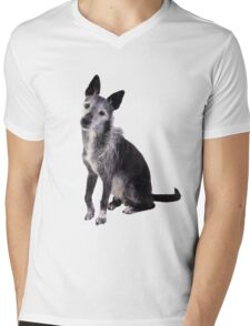 mixed breed dog Mens V-Neck T-Shirt