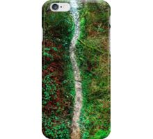 Fallen Path iPhone Case/Skin