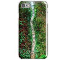 Fallen Path iPhone Case/Skin