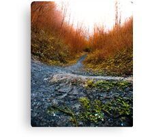 Leaving The Tunnel Canvas Print