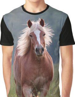 Backlit Beauty Graphic T-Shirt