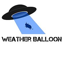 UFO or weather balloon? Photographic Print