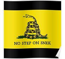 No Step on Snek Flag Poster