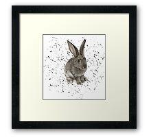 Cute Bunny Framed Print