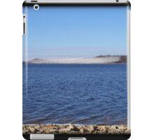 February Swarm iPad Case/Skin