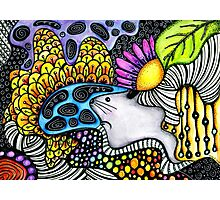 Psychedelic Chinchilla Photographic Print