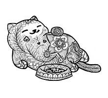 Zen cat Photographic Print