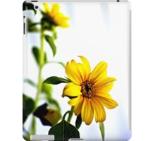 Flowers - dwarf sunflowers (2010) iPad Case/Skin