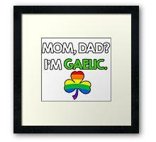 St. Patrick's Gay Gaelic Framed Print