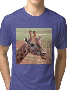 Gentle Giraffe Tri-blend T-Shirt