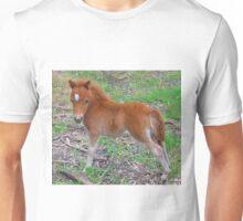 Two Week Old Miniature Pony Foal Unisex T-Shirt
