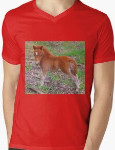 Two Week Old Miniature Pony Foal Mens V-Neck T-Shirt