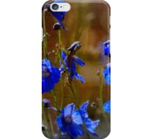 Summer blues iPhone Case/Skin