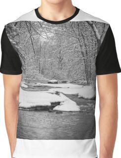 Winter At Brainards Bridge Park 2016-1 Graphic T-Shirt