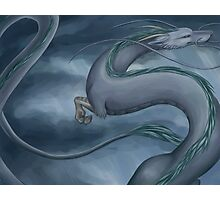 Haku the Dragon Photographic Print