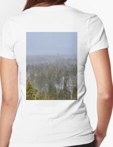 Peak to Peak Highway Snowstorm Study 1  Womens Fitted T-Shirt