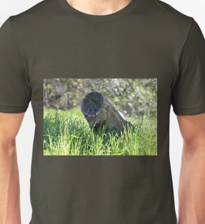 Old Tree Stump In Grass  Unisex T-Shirt