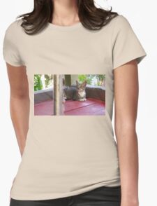 Pondering Cat Womens Fitted T-Shirt