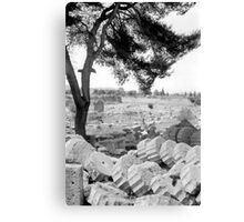 Fallen Columns, Olympia, Greece Canvas Print